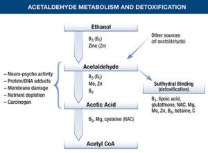 acetaldehyde metabolism