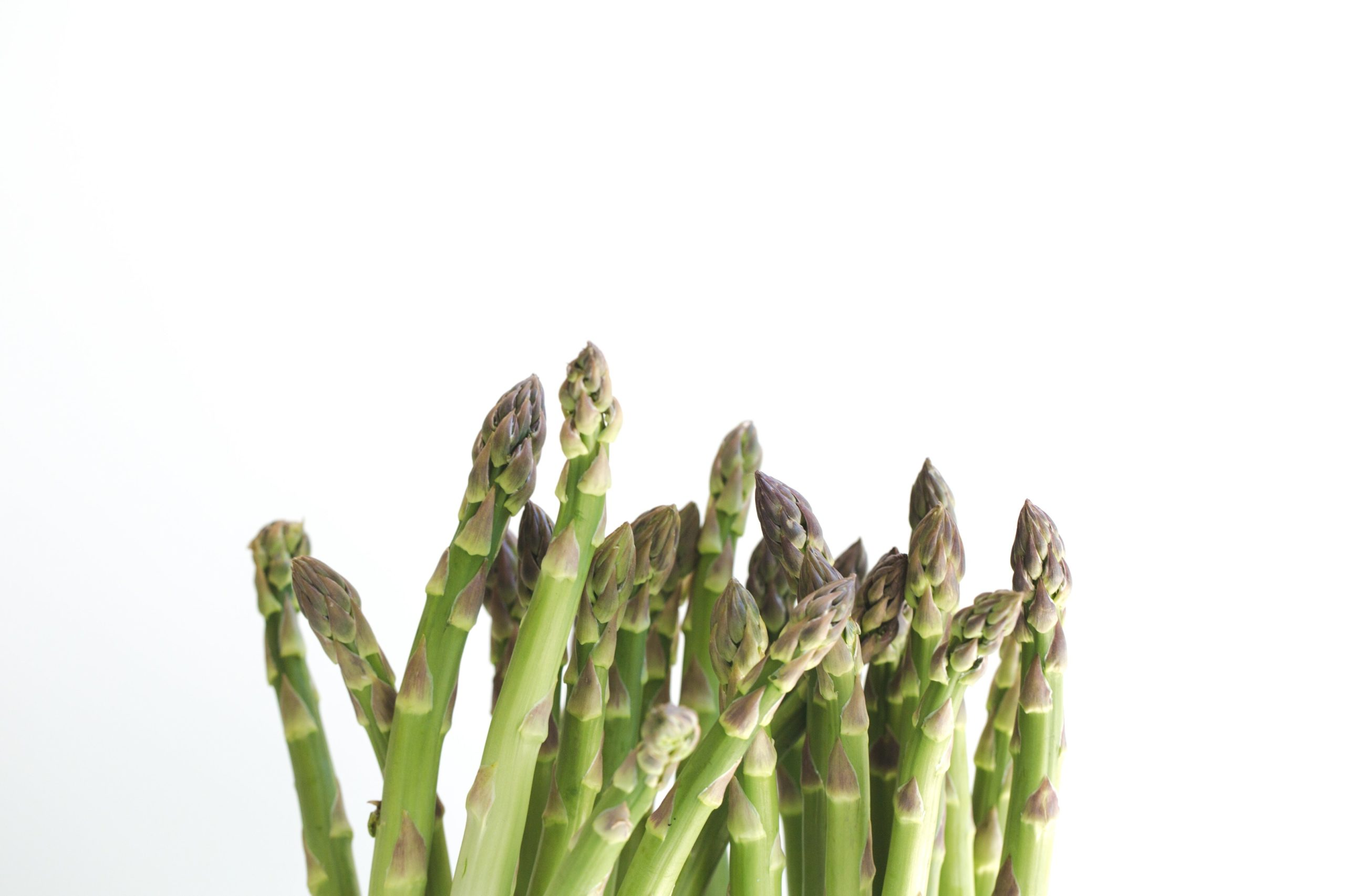 Asparagus Hangover Cure: Does It Work?